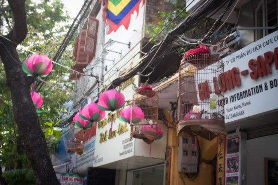 Hanoi-139